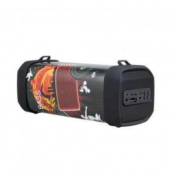 Haut Parleur Bluetooth MTK F2843